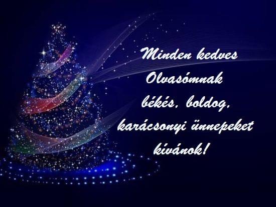 Békés, boldog, karácsonyi ünnepeket kívánok!